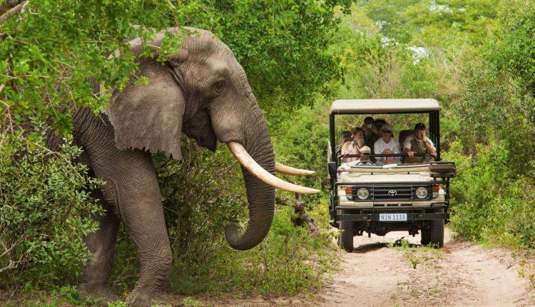 La journée mondiale du tourisme 2020 célébrée autour du tourisme et du développement rural