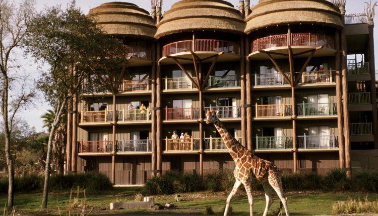 Allier : le Savana Reserve, nouvel hôtel du PAL, (presque) prêt à ouvrir ses portes